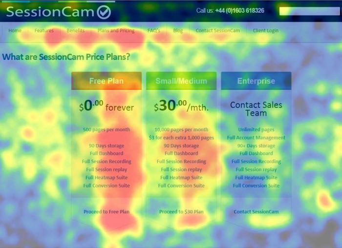 pricing-page-heatmap